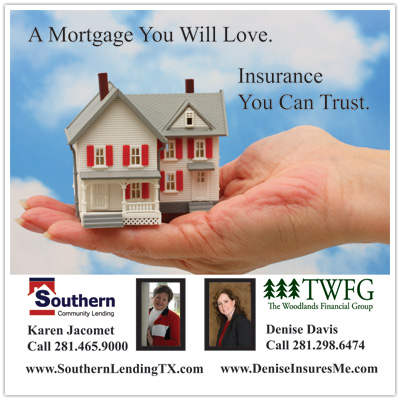 home mortgage insurance: